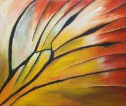 Jezebel butterfly wing