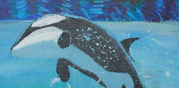Washington Orca